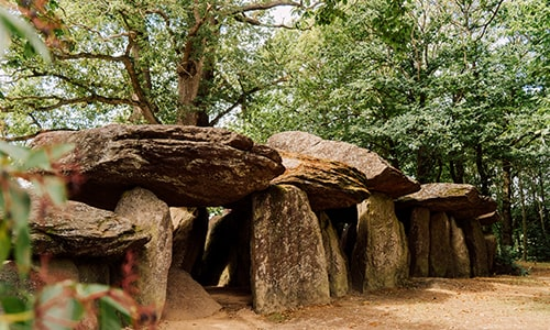 Dolmen-in-brittany-forest