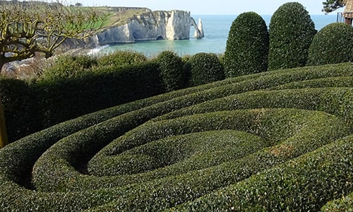 etretat cliff and garden